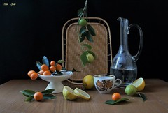 Simple Abundance (Esther Spektor - Thanks for 12+millions views..) Tags: stilllife naturemorte bodegon naturezamorta stilleben naturamorta composition creativephotography art tabletop food citrus lemon kumquat slice branch tray decanter cup stand water pattern ambientlight glass ceramics white yellow green orange brown black canon estherspektor coth coth5