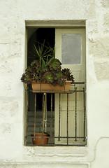 Puglia 2016-117 (walter5390) Tags: puglia apulia italia italy south sud meridione meridionale monopoli architettura architecture