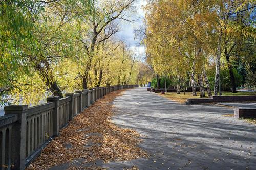 Walk to the golden autumn / Прогулка в золотую осень