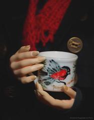 Anet4 (Ermilena Puppeteer) Tags: lltedria lalegendedetemps lalegendedetempsedria balljointeddoll handmade handmadeforbjd