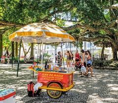 Floripa - Praça XV (silwittmann) Tags: florianopolis sc santacatarina floripa brasil brazil silwittmann 2019 centrohistorico oldcity urban cityscape