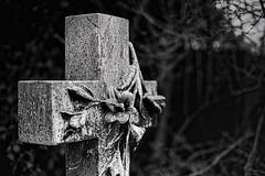 Lilies (Phancurio) Tags: lilies flowers grave cross cemetery monochrome