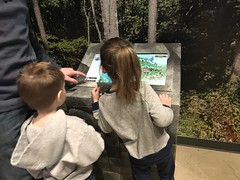 "2018-03-24-to-30-minnesotta-to-see-adam-and-sara--curl-with-family---wilderness-lodge-game-26586045197_4d366505cb_o_43135996300_o • <a style=""font-size:0.8em;"" href=""http://www.flickr.com/photos/109120354@N07/46218654041/"" target=""_blank"">View on Flickr</a>"