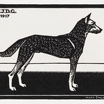 Dog (1917) by Julie de Graag (1877-1924). Original from The Rijksmuseum . Digitally enhanced by rawpixel. thumbnail
