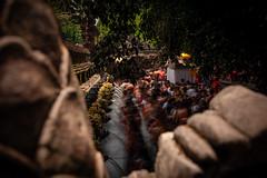 Tirta Empul - Water Temple (axel.becker73) Tags: tirta empul water temple tempel holy heilig indonesia indonesien bali tampaksiring purification ritual bath prayer travel travelphotography d500