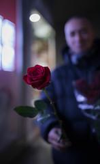 Gentlemen...love (ana_kapetan_design) Tags: street flower people love romantic rose