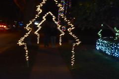 Blurry Light (earthdog) Tags: 2018 needstags needstitle nikon nikond5600 d5600 18300mmf3563 christmas decoration light christmaslight sanjose willowglen night lowlight blur soft arch tree christmastree