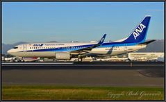 JA88AN  ANA  All Nippon Airways (Bob Garrard) Tags: ja88an ana all nippon boeing anc new 737 delivery flight japanairways panc