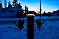 A little glow (darletts56) Tags: sky blue white orange yellow snow light pole post home homes house houses village road tree trees black silhouette evening dusk night sunset bright saskatchewan canada prairie