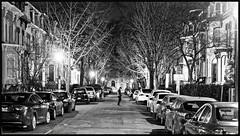 2019/009: Street Night (Rex Block) Tags: pedestriancrossing nikon d750 dslr 50mm f18g dc washington corcoranstreet northwest street night pedestrian trees winter project365 365the2019edition 3652019 day9365 09jan19