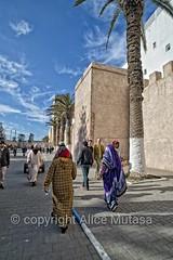 Marrakech and Essaouira 2018 (Alice Mutasa at PlacesandSeasons) Tags: morocco maghreb essaouira marrakech atlantic coast sea africa northafrica moorish moroccan textiles ancient culture maroc medina souk port shops magasin beach craft craftsman islam muslim islamic