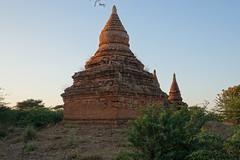 Pagodas at sunset in Bagan (12)