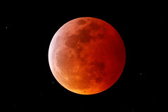 There Was A Super Blood Wolf Moon And It Was Just, Wow (worldnewsback) Tags: latest funny videos images