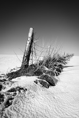 Boundary (Paul Timlett) Tags: barleycroftfarm farmland melsomescopse monochrome winter wiltshire bnw nikond850 blackwhite outdoors rural salisburyplain landscape snow