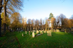 St Mary's Graveyard (Martin Pettitt) Tags: 2018 autumn burystedmunds dslr leaves nikond90 november outdoor sigma1020mmf456exdchsm stmarysgraveyard suffolk trees uk