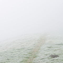 Mittagszeit oder wo ist der Bachtel? (zeh.hah.es.) Tags: nebel fog mist weg path track frost bachtel ktzh schweiz switzerland grün green weiss white grau grey gray wiese meadow grad ridge