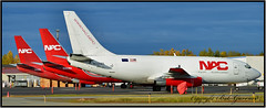 Three Little Piggies (Bob Garrard) Tags: northern air cargo nac boeing 737 delta lines piedmont airlines anc panc n320dl n321dl n360wa 737200 737300