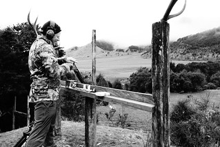 New Zealand Free Range Hunting - Marlborough 8