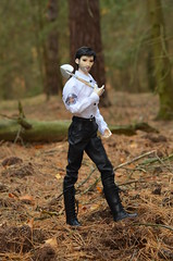 Lucifer's mysterious machinations (1) (JL_the_Lion) Tags: lucifersmysteriousmachinations bjd 14 msd granado doll vigor lucifer morningstar outdoor autumn forest wood outfit mkdollsart etsy