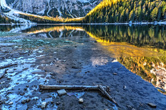Ice (giannipiras555) Tags: lago braies trentino riflessi ghiaccio alba alberi montagna paesaggio landscape natura travel autunno