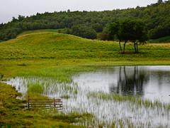 Fuaran na Fenne, Sept 2017 (5) (Janpram) Tags: fuarannafenne scotland walkinglandscape scottishcountryside scottishlandscape landscape countryside trees rain