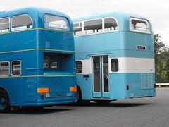 Walsall Daimler Fleetlines @ Showbus 2018 (3) (Andy Reeve-Smith) Tags: daimler daimlerfleetline 56 116 xdh56g xdh516g 6lx crg6lx crc636 cummins walsall walsallcorporation wmpte westmidlandspte showbus 2018 showbus2018 doningtonpark donington castledonington derbyshire derbys leicestershire leics neleics