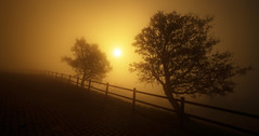 Pico Sacro (Noel F.) Tags: sony a7r ii a7rii galiza galicia neboa mist fog pico sacro ilicinus aciñeira encina sunrise mencer voigtlander 15 iii vm