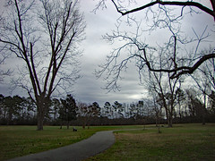 Walking Trail Northeast Park. (dccradio) Tags: lumberton nc northcarolina robesoncounty outdoor outdoors outside park citypark tree trees winter january saturday saturdaymorning morning goodmorning sky cloudy overcast grass lawn yard ground penningtonathleticcomplex drraymondbpenningtonathleticcomplex northeastpark treebranch branch branches treebranches treelimb treelimbs paved pavement trail walkingtrail bench parkbench