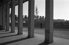 190104_Parc_Central_029 (Stefano Sbaccanti) Tags: bw blackandwhite bn parccentral valencia minox35gl kentmere400 bellinihydrofen analogicait analogue analogico argentique spain spagna selfdeveloped 2019 city