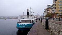 The new (refurbished) commuter boat Emelie II in Lake Hammarby in Stockholm. In service nov/dec 2018. (Franz Airiman) Tags: msemelieii ressel resselrederiab kollektivtrafik publictransport commute pendling båt boat ship fartyg stockholm sweden scandinavia hammarbysjöstad söder södermalm msbalbina