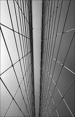 img499 (Jurgen Estanislao) Tags: nyc new york film analog street photography black white jurgen estanislao voigtlaender bessa r4m colorskopar 28mm f35 bw yellow 022m kodak 400tx hc100 g