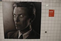Eye-conic (agent j loves nyc) Tags: ripdavidbowie davidbowie bowie spotify davidbowieishere davidbowieis broadwaylafayettestation mta subway subwaystation nyc newyorkcity
