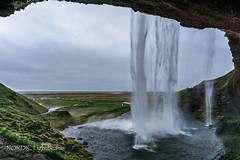 Seljalandsfoss II (NORDIC Lightbeams) Tags: seljalandsfoss samyang12mmf20 island wasserfall manuellesobjektiv iceland manuallens primelens waterfall suðurland is