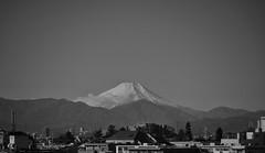 Mt. Fuji in the morning (Bill Morgan) Tags: fujifilm fuji xh1 18135 bw snapseed ipadpro mtfuji