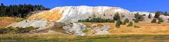 Mammoth Hot Springs, Yellowstone National Park, Wyoming, USA (Black Diamond Images) Tags: mammothhotsprings yellowstonenationalpark wyoming usa mammoth westernusatrip2018 canond60 1770 sigma1770 msice msicepanorama microsoftimagecompositeeditor 2018 travertineterraces terraces crystallizedcalciumcarbonate