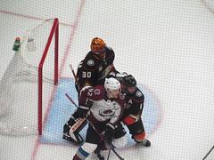 IMG_5073 (Dinur) Tags: hockey icehockey nhl nationalhockeyleague avalanche avs coloradoavalanche ducks anaheimducks