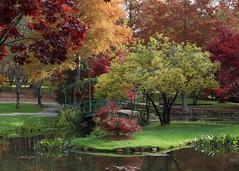 IMG_0372edited.psd (sherri_lynn) Tags: gibbsgardens foliage leaves trees fall autumn ponds reflections color monetbridge bridge lilypond garden japanesemaple