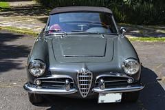 Alfa 107 (L Urquiza) Tags: classic alfa romeo sports