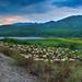 Λίμνη Ζαραβίνας  στο Πωγώνι Zaravina's lake Pogoni panorama
