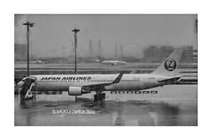 SMOKING LOUNGE (Armin Fuchs) Tags: arminfuchs japan tokyo airport haneda airplane window reflection smokinglounge japanairlines rain departure jazzinbaggies jal unicef