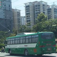 1-5 Auto B80 on bus line number 06: Chợ Lớn bus terminal - Chinatown <-> Nông Lâm University   Vehicle license plate: 53N - 5307   #buytsaigon #bus06 #transinco #1_5auto #vinamotor #hyundai #hyundaibus #benxecholon #benhvienchoray #daihocyduoctphcm #choan (phanphuongphi) Tags: vinamotor hyundai thinghebridge daihocsuphamkythuattphcm transinco baotangchungtichchientranh nhathieunhiquanthuduc hoconrua 15auto cauvuottram2 daihocsaigon buytsaigon choandong ngatuhangxanh daihocyduoctphcm truongthptlehongphong ngatumk sanofiaventisvietnam bus06 daitruyenhinhtphcm ngatubinhthai causaigon daihocsuphamtphcm daihocnonglamtphcm htv hyundaibus cauthinghe benxecholon ngatuthuduc benhvienchoray daihockhoahoctunhientphcm