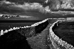 Follow me (Phancurio) Tags: monochrome landscape portisaac cornwall