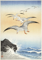 Five seagulls above turbulent sea (1900 - 1930) by Ohara Koson (1877-1945). Original from The Rijksmuseum. Digitally enhanced by rawpixel. (Free Public Domain Illustrations by rawpixel) Tags: pdproject21batch2x otherkeywords tagcc0 animal antique art asian bird drawing illustration japan japanese koson museum ohara oharakoson old paint rijksmuseum sea seagulls vintage