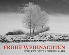 MERRY CHRISTMAS & A HAPPY NEW YEAR (LitterART) Tags: christmas weihnachten silvester neujahr 2019 monochrome moor birken neujahrsgrüse weihnachstgrüse gruskarte