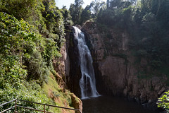53467-Khao-Yai (xiquinhosilva) Tags: 2017 dongphayayen haewnarok hintung khaoyai mueangnakhonnayokdistrict nationalpark park thailand unescoworldheritage waterfall tambonnahinlat changwatnakhonnayok th