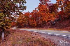 Fall Drive (J Ted Bell) Tags: sonyilce7m3 tokinafirin20mmf2feaf