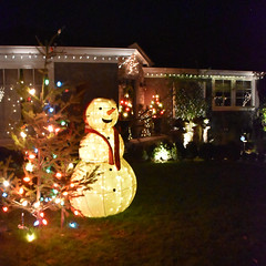 Christmas Front Yard (earthdog) Tags: 2018 nikon nikond5600 d5600 18300mmf3563 christmas decoration light christmaslight sanjose willowglen tree snowman christmastree house