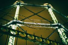 behind a fence (Al Fed) Tags: 20181111 athen athens fence greece lichtblick hinterdemgartenzaun