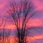 Autumn Sunset - Coucher de soleil d'automne thumbnail