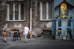 polonia_2018-197 (Marco Cheli) Tags: polonia poland europe warsaw cracovia krakow streetphotograpy street